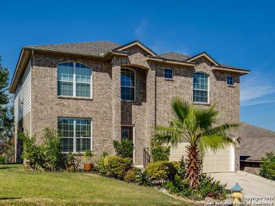 San Antonio Single Family Home For Sale: 20803 Las Lomas Blvd