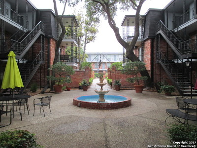 Bexar County Condo/Townhouse For Sale: 8401 New Braunfels #135