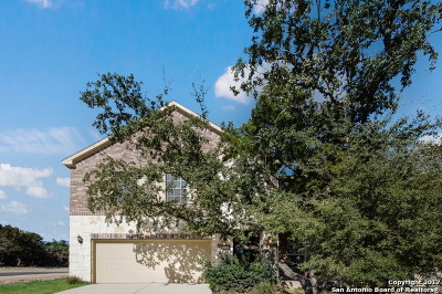 Helotes Single Family Home For Sale: 10615 Desert Rock