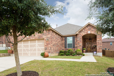 San Antonio TX Single Family Home New: $248,500