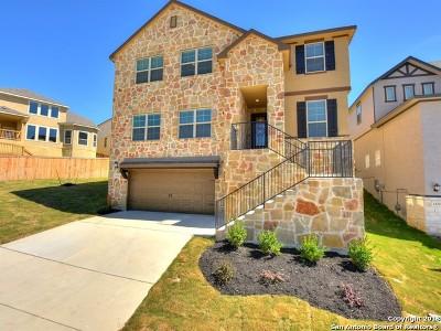 San Antonio Single Family Home Back on Market: 1416 Tyrou Lane