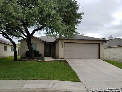 San Antonio Single Family Home New: 20726 Blue Trinity