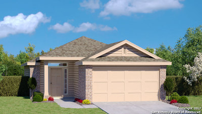New Braunfels Single Family Home Back on Market: 2300 Olive Hill