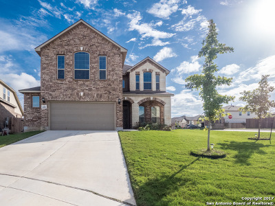 Schertz Single Family Home New: 10307 Obernai Path
