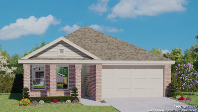 New Braunfels Single Family Home New: 2304 Olive Hill