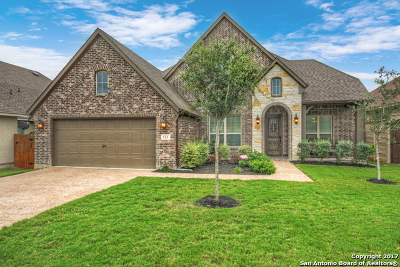 New Braunfels Single Family Home For Sale: 523 Lodge Creek Dr