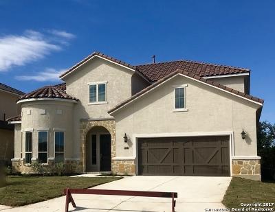San Antonio Single Family Home New: 8411 Pico De Aguila
