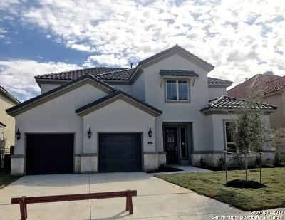 San Antonio Single Family Home New: 8426 Pico De Aguila