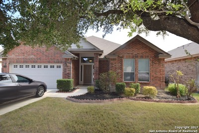 Bexar County Single Family Home For Sale: 5710 Lasalle Way