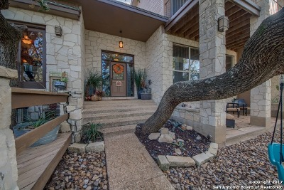 Comal County Single Family Home New: 30848 Blueberry Ridge Dr