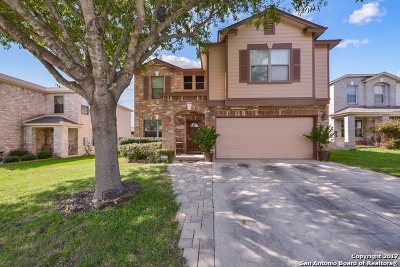 San Marcos Single Family Home New: 203 Valero Dr