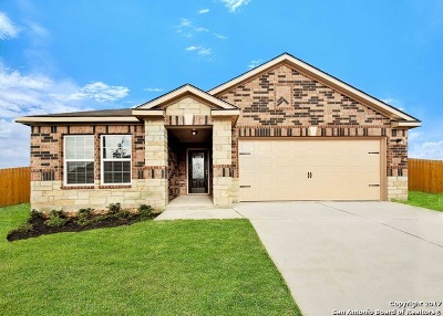 New Braunfels Single Family Home New: 6397 Hibiscus