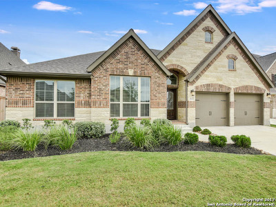 New Braunfels Single Family Home New: 2612 Malboona Mews Dr