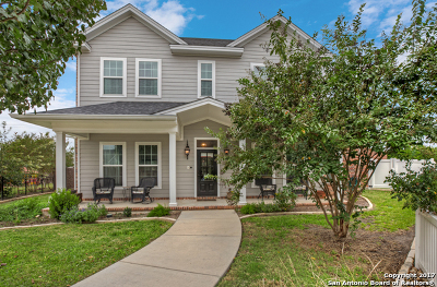 New Braunfels Single Family Home For Sale: 2336 Village Path
