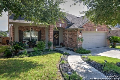 San Antonio Single Family Home New: 3538 Sumantra Cliff