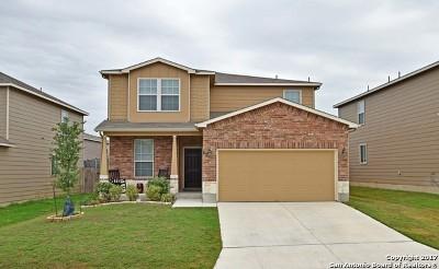 Bexar County Single Family Home New: 13146 Cipresso Palco