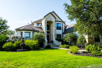 San Antonio Single Family Home New: 2019 Sawgrass Rdg
