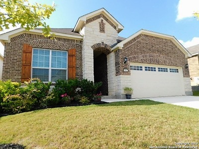 Helotes Single Family Home New: 10807 Red Sage