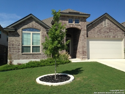 Boerne Single Family Home New: 27022 Oleander Chase