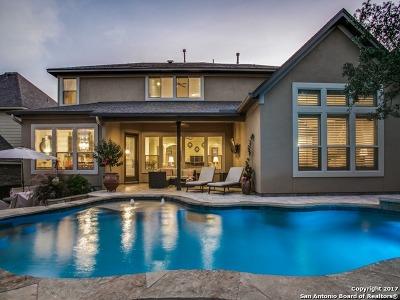 Boerne Single Family Home New: 28030 Vine Cliff