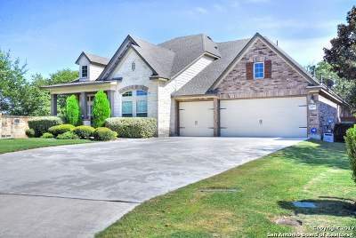 Single Family Home New: 24838 Cloudy Crk