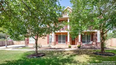 San Antonio Single Family Home New: 22239 Midbury