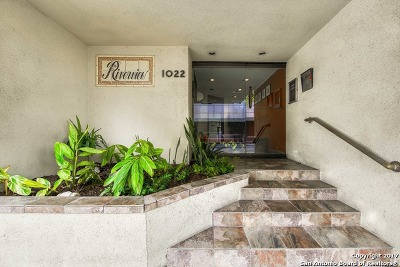San Antonio Condo/Townhouse New: 1022 E Navarro #404