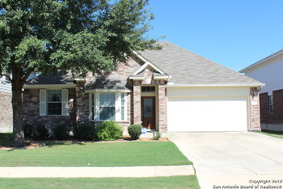 Cibolo Single Family Home Back on Market: 217 Cj Jones Cv