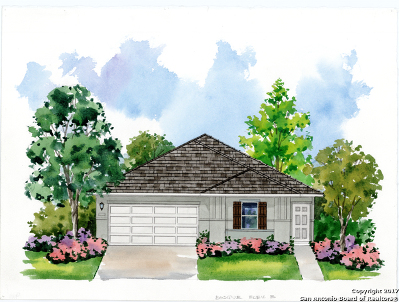 San Antonio Single Family Home For Sale: 5731 Chestnut Crossing