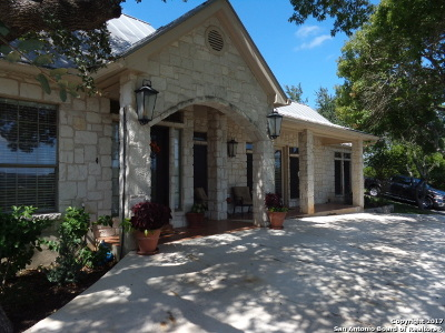 Boerne Single Family Home For Sale: 26843 Nelson Hl