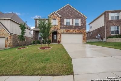 Bexar County, Kendall County Single Family Home New: 27418 Valle Blf