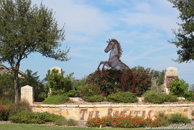 Helotes Residential Lots & Land For Sale: 14007 Panther Vly