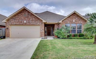 Single Family Home New: 24310 Woodrose Park