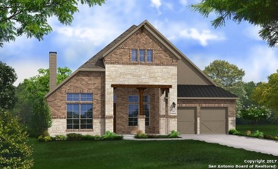 New Braunfels Single Family Home New: 909 Carriage Loop