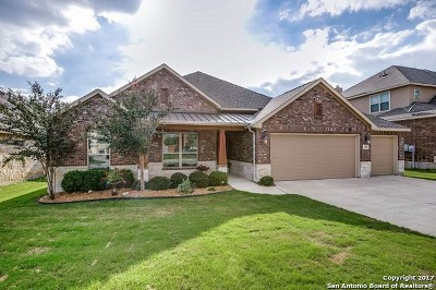Boerne Single Family Home New: 27043 Sable Run