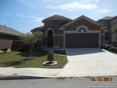 Bexar County, Comal County, Guadalupe County Single Family Home For Sale: 8026 Andrews Pass