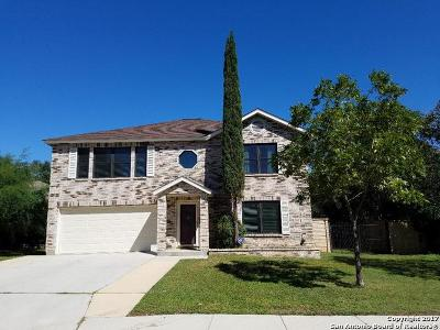 Gold Canyon Single Family Home For Sale: 2215 Sapphire Oak