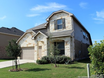 Bexar County Single Family Home New: 13809 Cohan Way