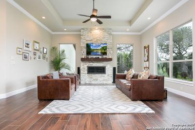 Menger Springs Single Family Home For Sale: 638 Menger Springs