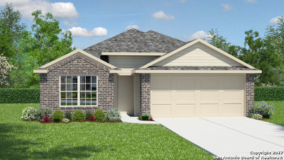 San Antonio Single Family Home New: 10711 Branded Hollow