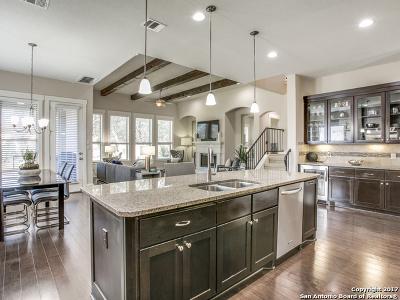 Bexar County Single Family Home New: 29 Liser Gln