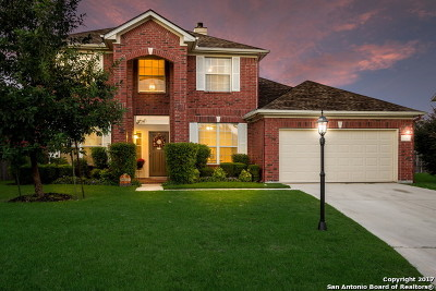 San Antonio Single Family Home New: 111 Jardin Vista