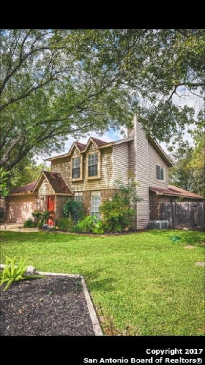 San Antonio Single Family Home New: 14929 Moss Vw