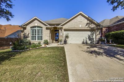 San Antonio Single Family Home New: 20830 Encino Ash