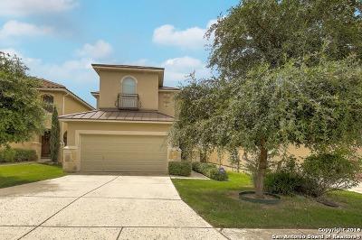 San Antonio Single Family Home New: 4202 Woodbridge Way