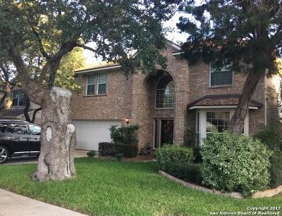 San Antonio Single Family Home New: 222 Mesa Loop