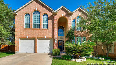 San Antonio Single Family Home New: 1707 Lookout Ct
