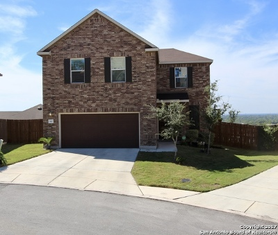 San Antonio Single Family Home New: 13407 Loma Sierra