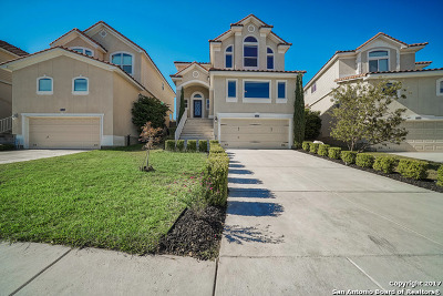 Bexar County Single Family Home New: 25535 Tranquil Rim