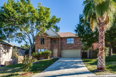 San Antonio Single Family Home New: 10954 Hamlen Park Dr S